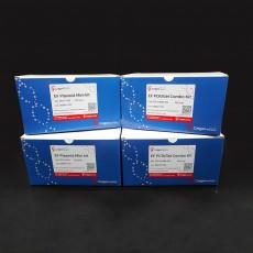 [EFD-P-200] EF Plasmid kit