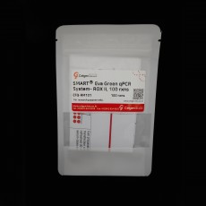 [EFQ-RM101/EFQ-RM105] SMARTⓇEva Green qPCR System- ROX II