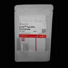 [EFT-T500/EFT-T2500] BulletⓇ Taq DNA Polymerase