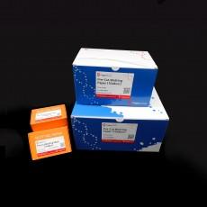 [EFW-TP100/EFW-TP500/EFW-TP1000] Pre-Cut Blotting Paper (10x8cm)